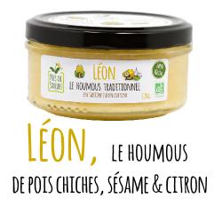 Léon icone 150921